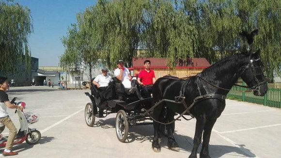 北京盘龙翠谷亲子马术俱乐部开业 贵族运动一站式体验