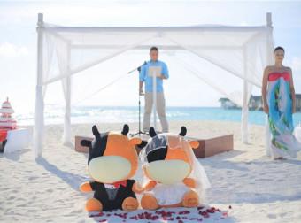 中国七夕情人节 途牛马尔代夫集体婚礼浪漫上演