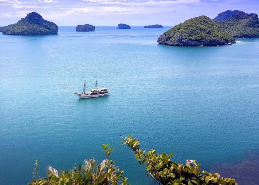 文化和旅游部提示游客海外自助游要警惕各类风险