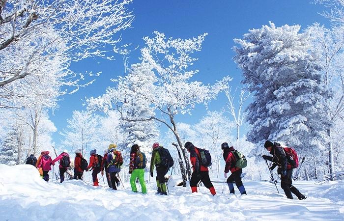 2022年冰雪旅游市场将达3.4亿人次