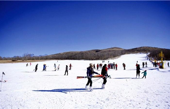五省市冬季旅游市场调查:开发冰雪资源 打造热门产业