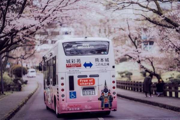 8万块的七星列车飞猪专列发车,日本进入全年旅游最旺季